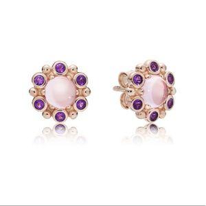 New Heraldic Radiance Earrings